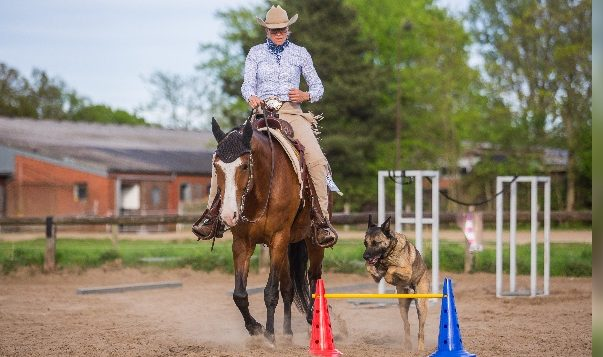 Reiterin mit Pferd und Hund im Parcours