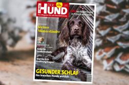 DER HUND Ausgabe 1/20 Cover