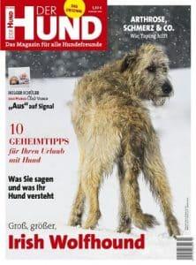 Das Cover von DER HUND 3/20 zeigt einen Irish Wolfhound, der über seinen Rücken in die Kamera schaut.