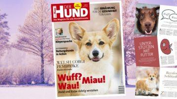 Cover und einige Seiten der Ausgabe 2/20 von DER HUND