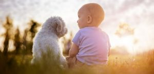 Kleiner Hund und Kleinkind sitzen nebeneinander auf einer Wiese