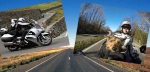 Motorrad fahren mit Hunden