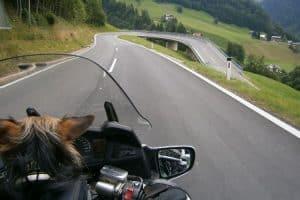 Aussicht von Motorrad auf Straße