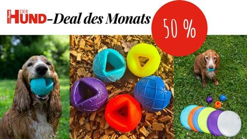 Deal des Monats Moby