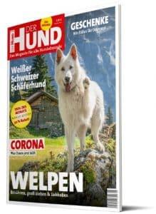 Das Cover von DER HUND 5/20 zeigt einen Weißen Schweizer Schäferhund, der seine Pfote zur Kamera streckt