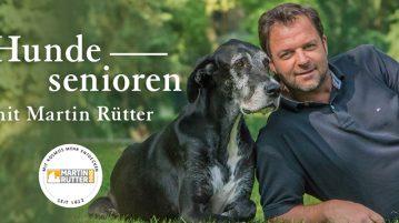 Buch Hundesenioren von Hundeprofi Martin Rütter