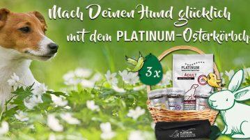Mach deinen Hund glücklich mit dem PLATINUM-Osterkörbchen