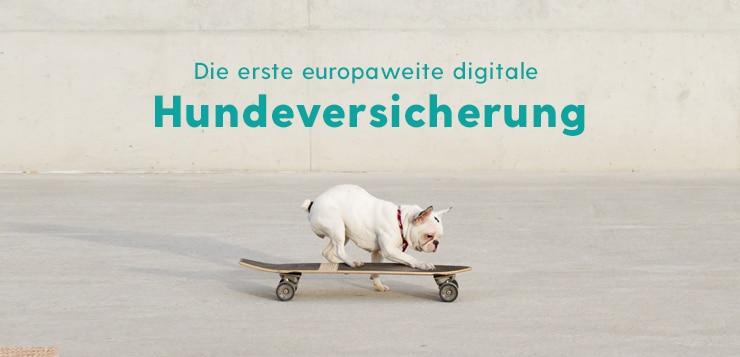 Balunos Hundeversicherung Osterschnueffeln 2020