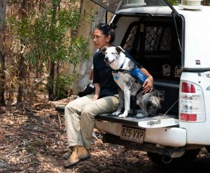 Hund und Halterin im Auto vor Koalarettungs-Einsatz