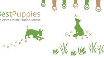 Zwei grüne Grafiken spielender Hunde