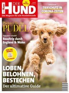 Das Cover von DER HUND, Ausgabe 6/20 zeigt einen Aprikot-farbenen Pudel, der auf die Kamera zuläuft. Im Hintergrund sind rosa blühende Bäume zu erkennen