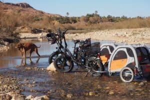 ZweiFahrräder mit Hunde-Anhängern stehen in einem Flussbett. Ein Hund spielt im Wasser