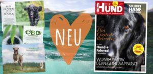 Ausgabe 08/20 von DER HUND