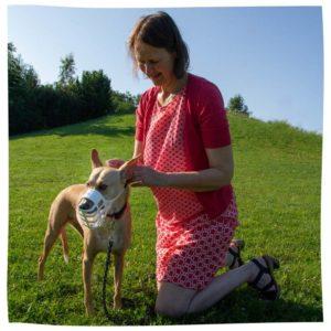 Hund bekommt Maulkorb angelegt
