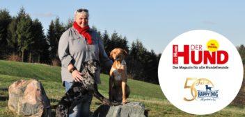 Mensch-Hund-Team finden, formen, fördern – Webtalkaufzeichnung
