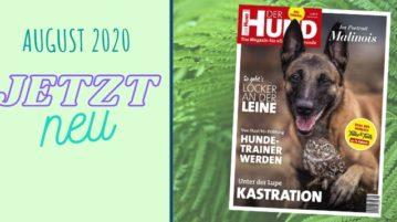 Ausgabe 9/20 von DER HUND erscheint im August 2020