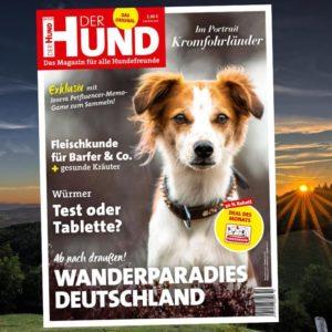 Cover Ausgabe 10/20