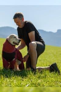 Mann legt Retriever Hundemademantel an