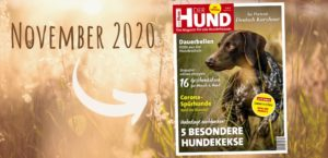 November-Ausgabe DER HUND 2020