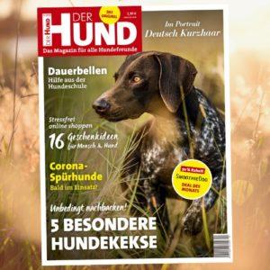Das Cover zeigt einen Deutsch Kurzhaar auf einer Wiese