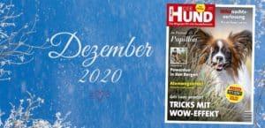 DER HUND Ausgabe Dezember 2020