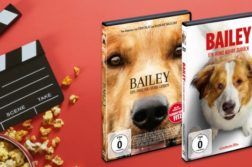 DVDs Bailey Hundefilme