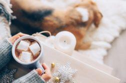 Hund liegt auf Teppich, Halterin trinkt heiße Schokolade