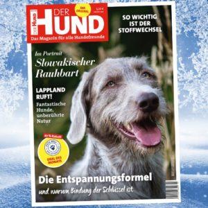 Januar Ausgabe DER HUND 2021