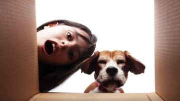 Frau und Beagle schauen in ein Paket