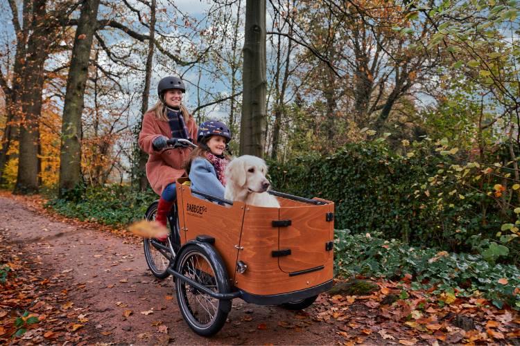 Kind und Hund in Babboe Lastenfahrrad