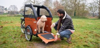 Babboe: Das ideale Lastenrad für Hundefreunde