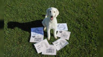 Pudel mit Rally Obedience Anweisungen