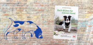 Buch-Rezension, Bach-Blüten für meinen Hund, Hoffmann