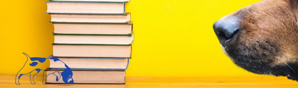 DER HUND Buch-Rezensionen