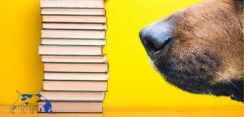 Die Schmöker-Schnüffler: Buch-Rezensionen