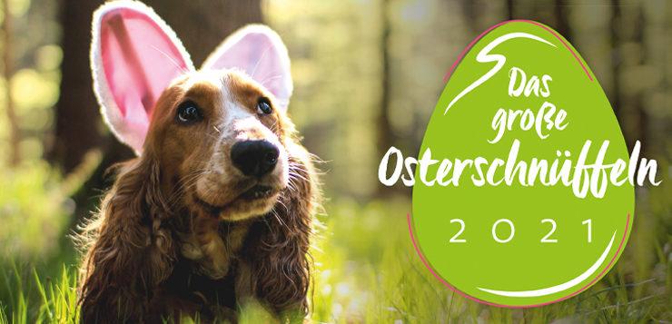 Das große Osterschnüffeln 2021: Jetzt gewinnen!
