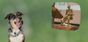 Bis zum 30.6.21 kann man sich für den Deutschen Tierschutzpreis bewerben und andere vorschlagen.