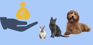 Einmalzahlung für Tierheime, April 2021