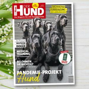 Das Cover der Mai-Ausgabe 2021 von DER HUND zeigt fünf Deutsche Doggen