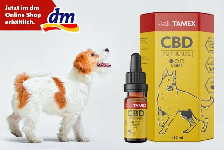 CBD-Öl von Calitamex gibt es bei dm.