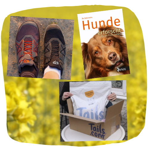 Im Mai kannst du bei uns Schuhe, Bücher und Futter gewinnen.
