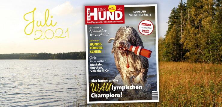 Cover Juli Ausgabe DER HUND