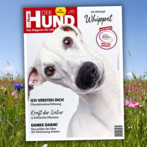 Cover DER HUND Juni-2021