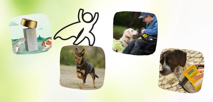 Hunde-News: Juni 2021