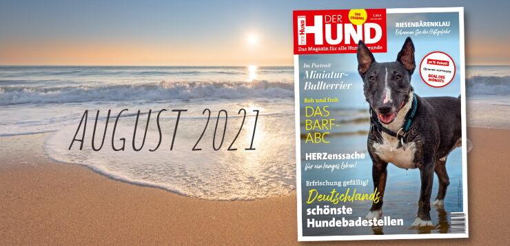 Die August-Ausgabe 2021