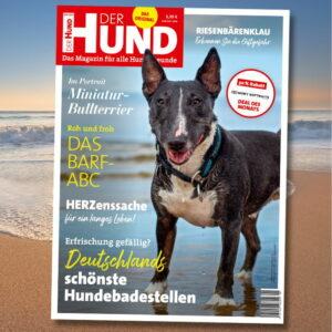 Das Cover der August-2021-Ausgabe, mit einem dunklen Mini-Bulli mit weißen Abzeichen, der am Strand steht und Richtung Kamera schaut.