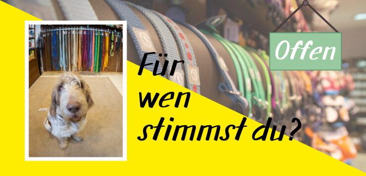 Wir suchen Deutschlands coolste Hundeläden!