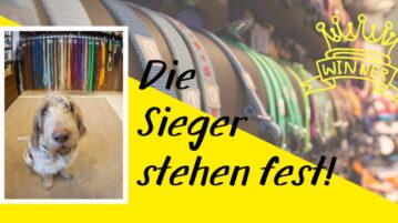 Die Sieger stehen fest! Abstimmung für Deutschlands coolste Hundeläden