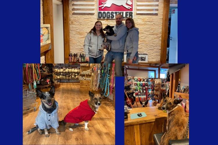 """DOGSTYLER® Nürnberg <br/>in 90429 Nürnberg, BY<br/><a href=""""https://www.dogstyler-shop.de/dogstyler-nuernberg"""" target=""""blank"""">www.dogstyler-shop.de/dogstyler-nuernberg/</a>"""