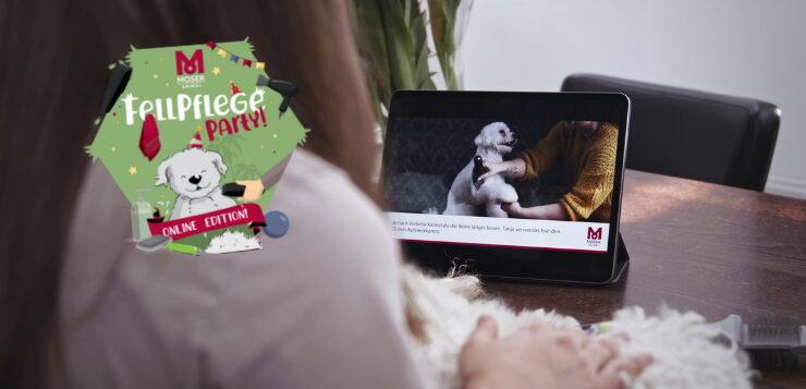 15. Juli & weitere Termine: Online-Fellpflegeparty von Moser Animal